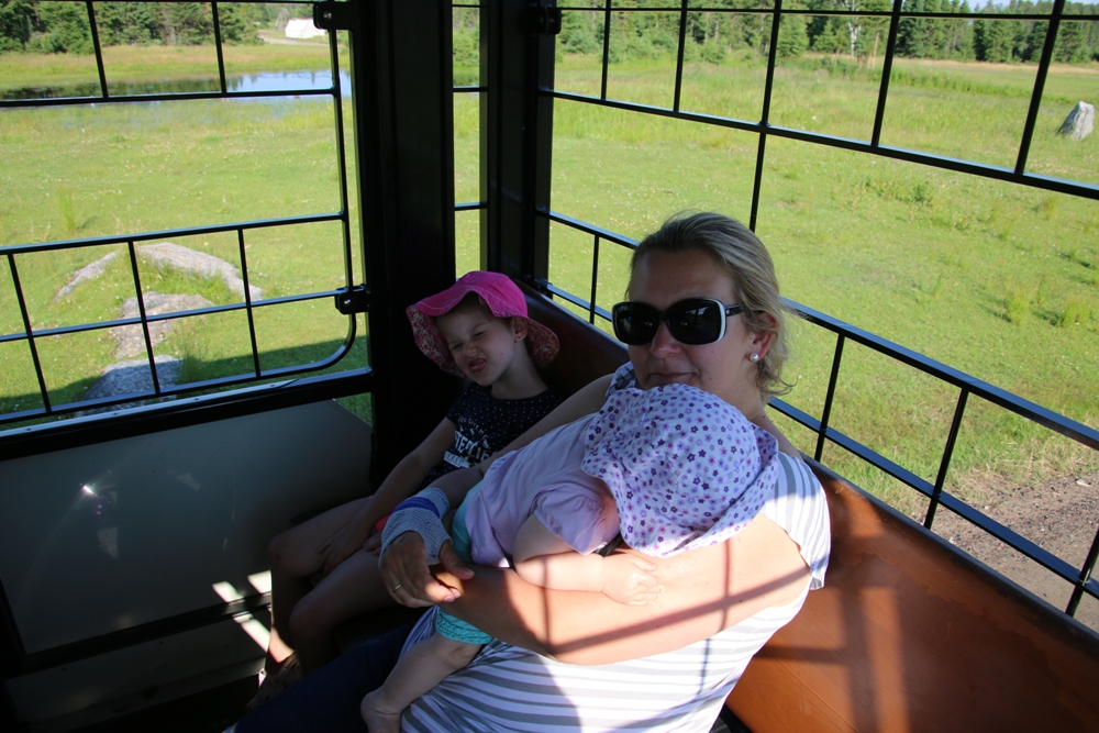 on the train at the zoo