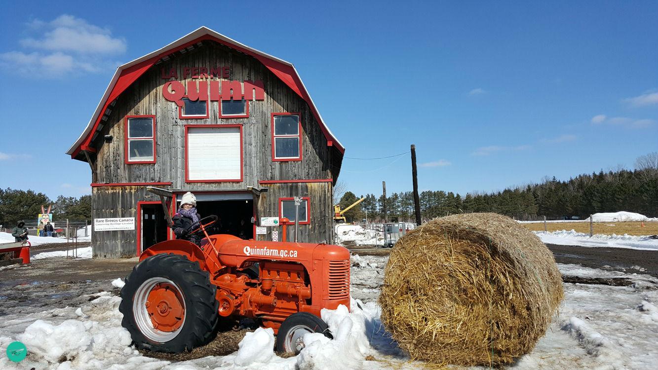 Quinn Farm Entrance