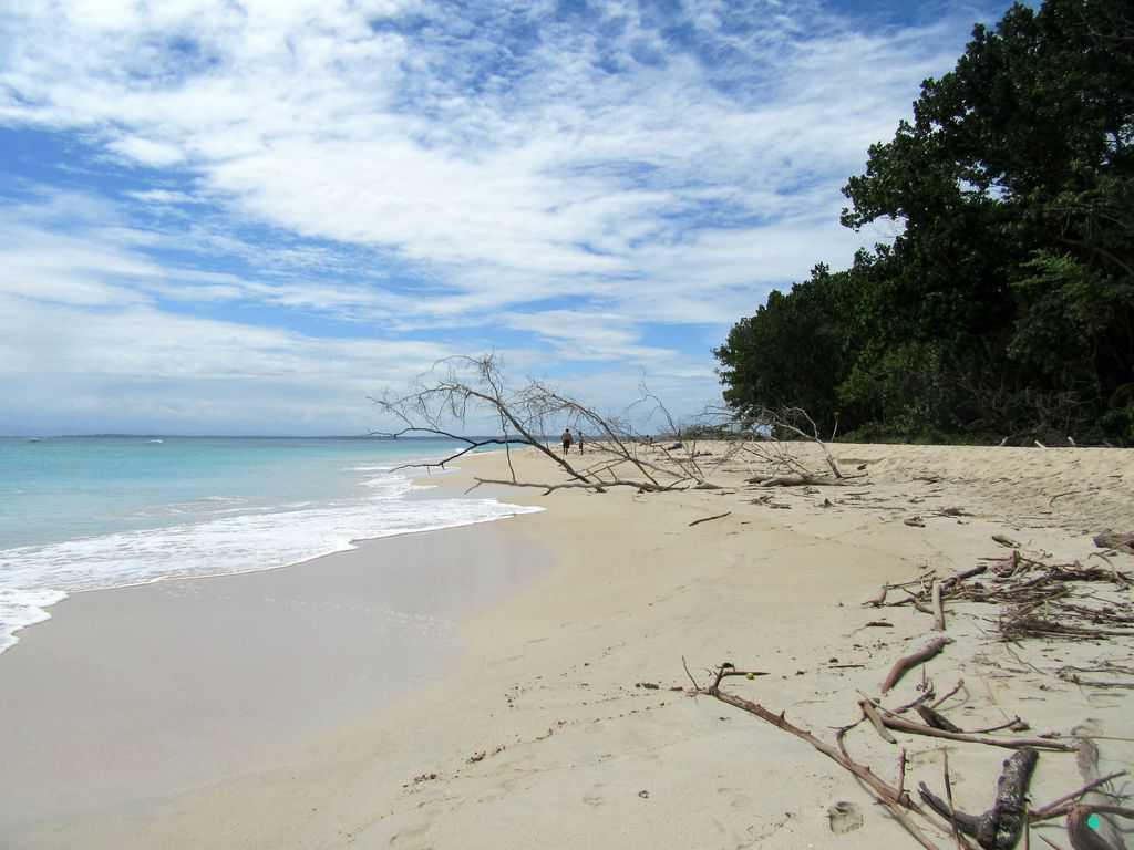 Beach at Isla Zapatilla Bocas del Toro in Panama