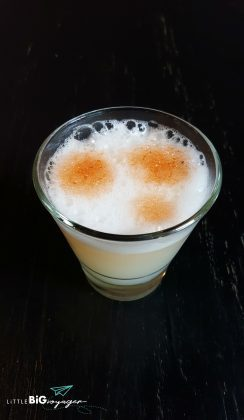 a glass of pisco sour the national drink of Chile