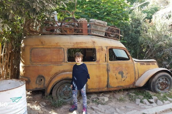Big J at Buin Zoo in front of a car wrack