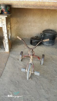 antique tricycle at the african sector of buin zoo
