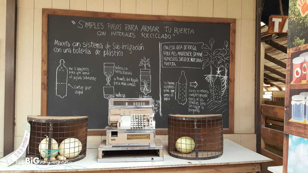 board with instruction for how to reuse plastic bottles